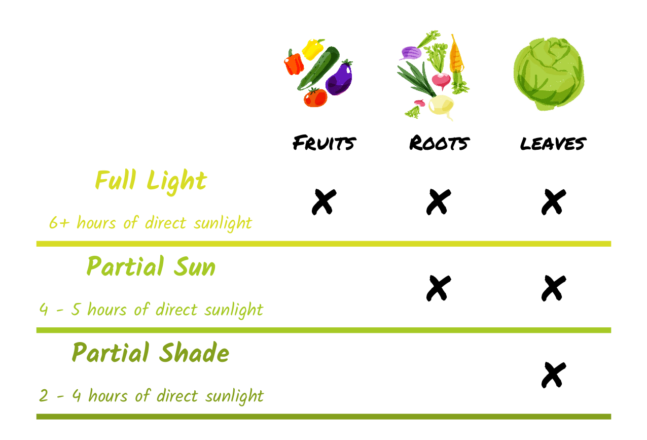 Sunlight Graphic EN